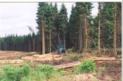 Letter seeks to retain access to forests