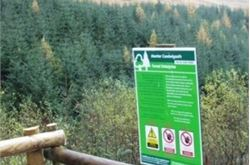 Forest sale plans felled