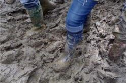 Mud 'an iconic part of festivals'