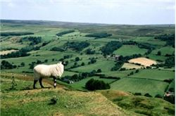 North York Moors plans nature treks