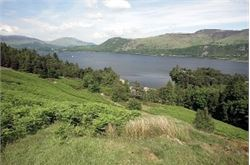 Consultation 'will see bad Lake District housing plans ditched'