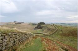 Authorities face Hadrian's Wall plaque problem