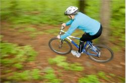 Mountain bikers to benefit from new Lake District bus services