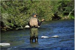 River tipped as top trout venue