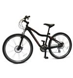 Men&#39;s Stealth DD 2011 Hardtail Mountain Bike (17&quot; Frame)