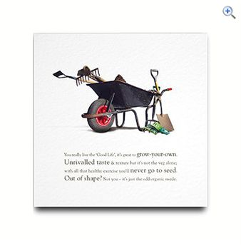 Rhyme With Reason Wheelbarrow Greeting Card