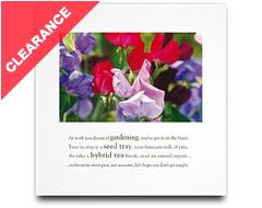 Sweet Peas Greeting Card