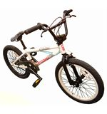 Grind 2010 BMX Bike