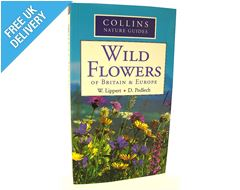 Nature Guide: Wild Flowers of Britain & Europe