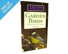 Nature Guide: Garden Birds of Britain & Europe