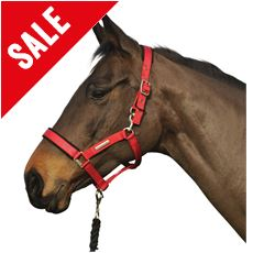 Field Safe Head Collar