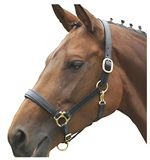 Ragley Lined Leather Collar Bridle