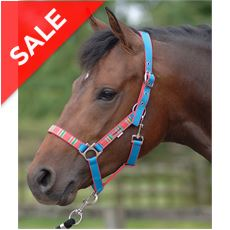 Aurora Head Collar