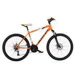 Shamen Men's Mountain Bike