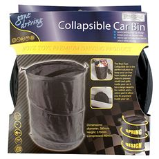 Collapsible Car Bin