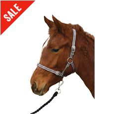 Foal Collar (One Size)