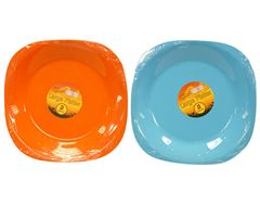 Large Picnic Plates (2 Pack)