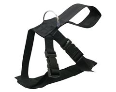 Dog Safety Harness (Large)