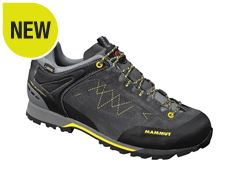 Ridge Low GTX Men's Approach Shoe
