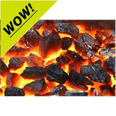 Instant Lighting Charcoal (1kg)