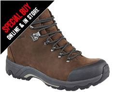 Fellmaster GTX Men's Walking Boots