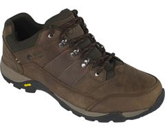 Luxor Men's Walking Shoe