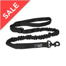 Shock Absorber Dog Lead