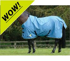Avante Light Turnout Rug