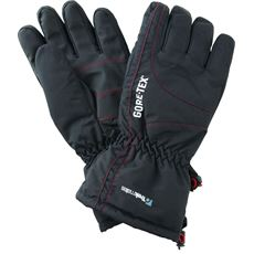 Chamonix GORE-TEX Gloves