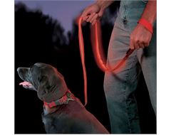 Nite Dawg - LED Pet Leash