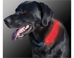 Dawg LED Collar Cover (Grey)