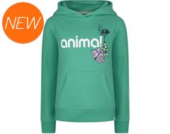 Flamingo Flower Hoodie (sizes 13-16)