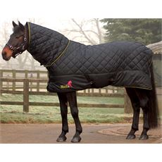 Avante 300 Fixed Neck Stable Rug