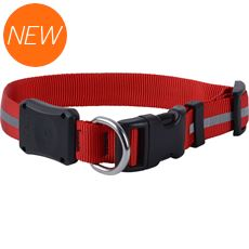 Nite Dawg II LED Collar (Large)