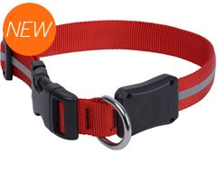 Nite Dawg II LED Collar (Medium)