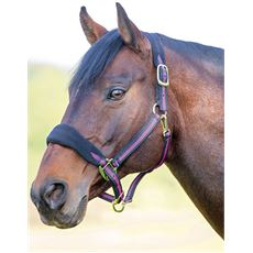 Topaz Fleece Headcollar