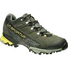 Men's Genesis GTX Hiking Footwear