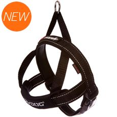 Quick Fit Harness (L)