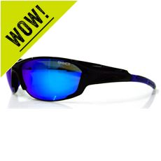 Baker Sunglasses (Shiny Black - Blue Revo)