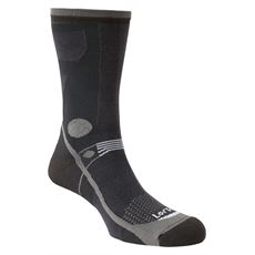 Men's T3 Light Hiker Socks