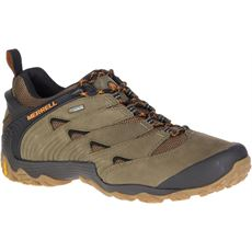 Men's Chameleon 7 GTX Shoes