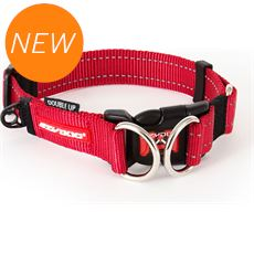 Double Up Dog Collar (L)