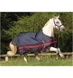Zing Lightweight Turnout Rug